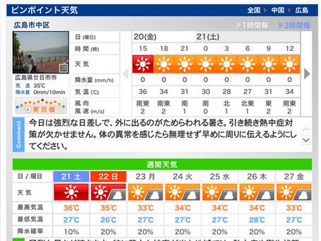 猛烈な暑さ!危険な夏とフレンチブルドッグ軟口蓋|がんばろう!広島