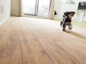 ツルツル床から愛犬を守る床リノベーション B&BFLOR 広島市T様邸施工