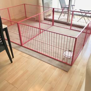 素敵なオーダーメイド・ケージが 完成✨|和歌山県J 様邸|ロボフロアーシートの床で快適空間♬