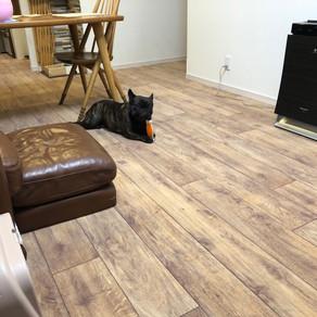 ロボフロアー施工完成✨|広島市K様邸|愛犬に優しい床リノベーション