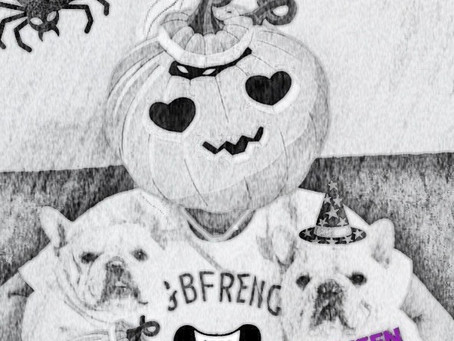 エマくん誕生日🎂|11月はB&B オリジナル商品がいろいろ|子犬情報