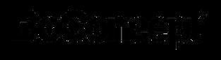 BoConcept logo.png