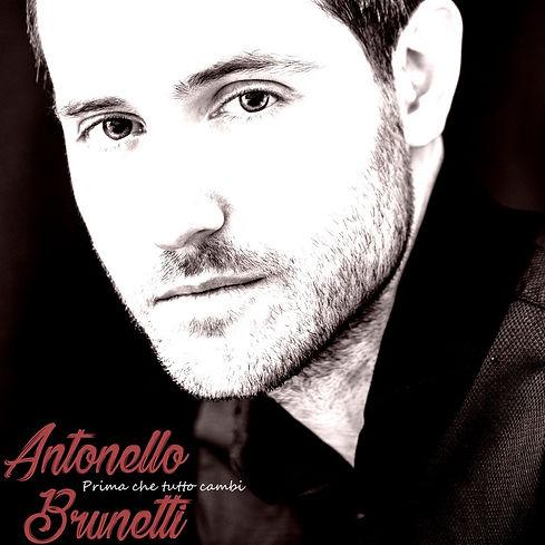 Antonellowebsitecover.jpg