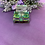 Thumbnail: Perfume Bottle Box Shape