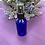 Thumbnail: Glass Spray Bottle 30 ml