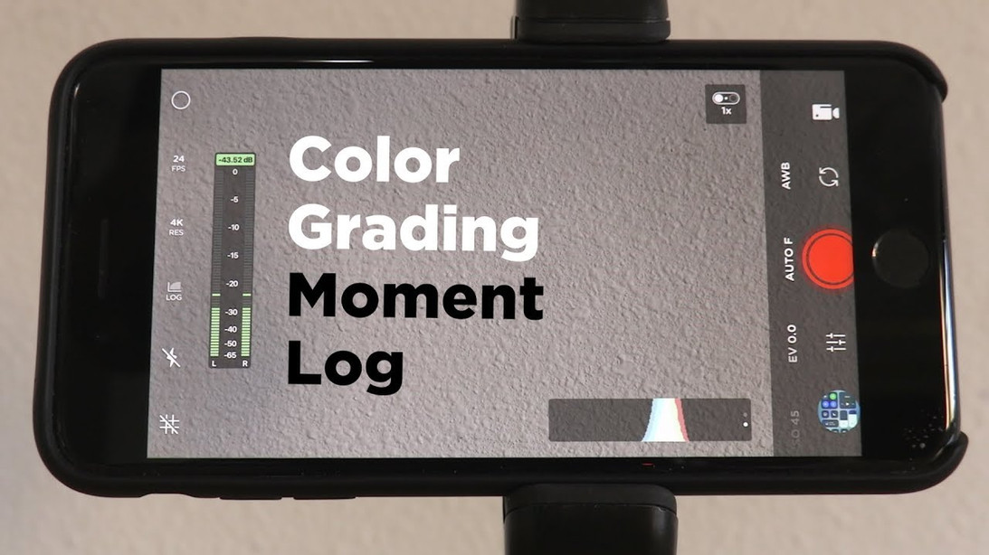 How To Color Grade Moment Log Footage