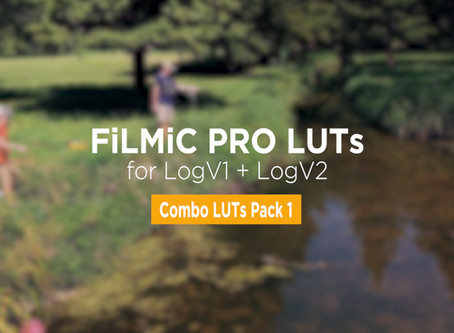 Our FiLMiC Pro LUT Packs Now Include LogV1 and LogV2 LUTs!