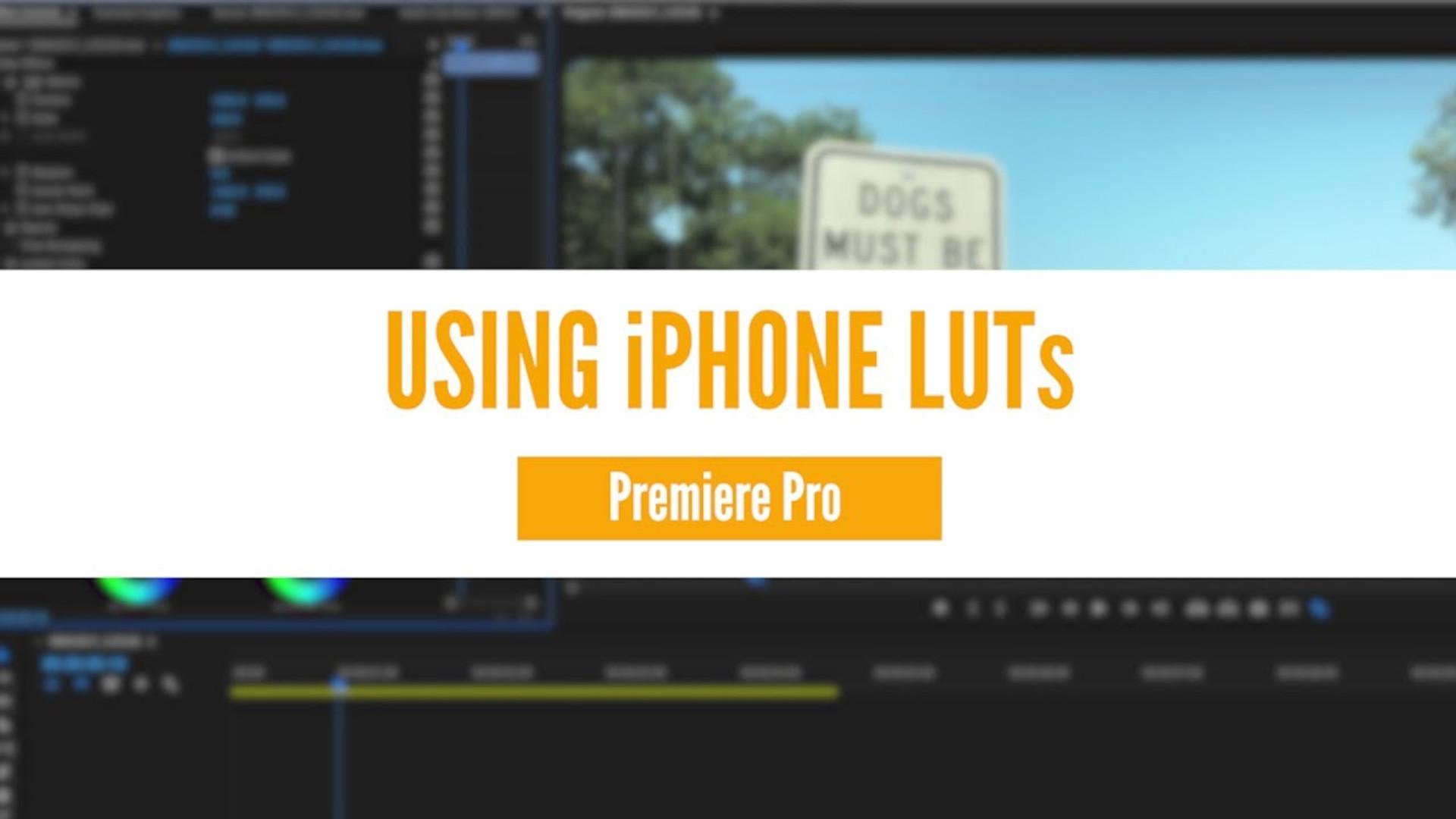 Using LUTs in Premiere Pro