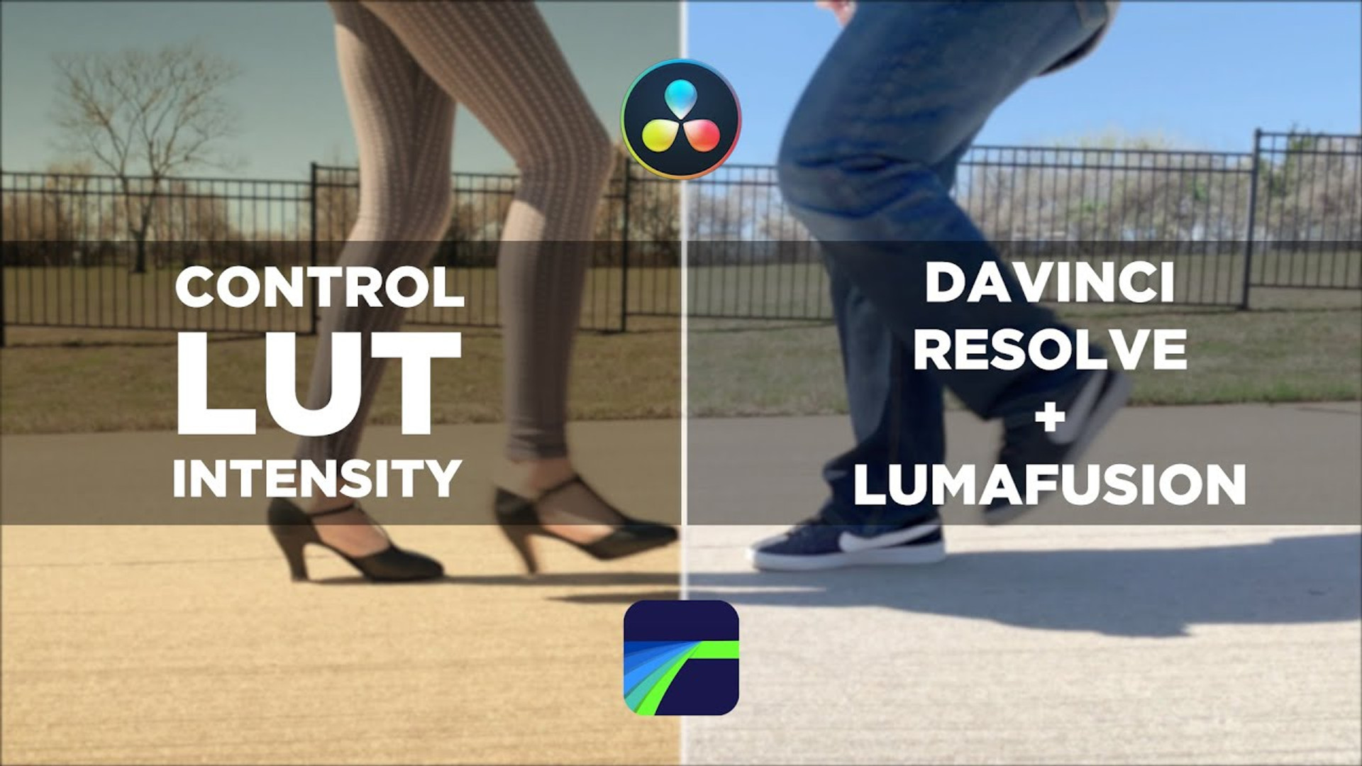 Adjust LUT Intensity 2