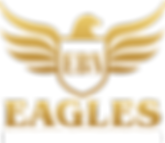 Eagle Business Networking_Logo_E03.png