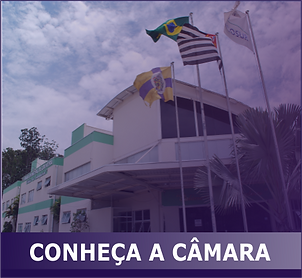BOTAO CONHECA A CAMARA.png
