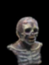 IMG_20160621_190749_edited_edited.png