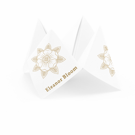 cootie-catcher-3D_0-Recovered-Recovered_