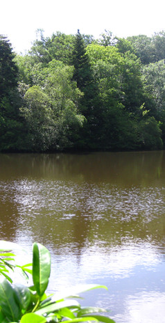 La grand étang