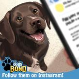 Dogs BOND Instagram