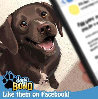 Dogs BOND Facebook