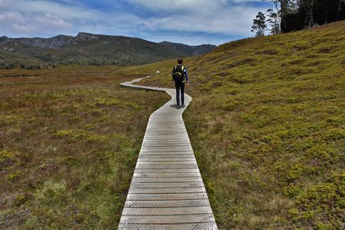A postcard from the unknown. Tasmanian diaries