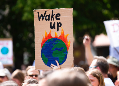 Stop the environmental catastrophe and save our future now