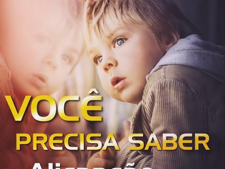 ALIENAÇÃO PARENTAL (LEI N.º 12.318/2010)