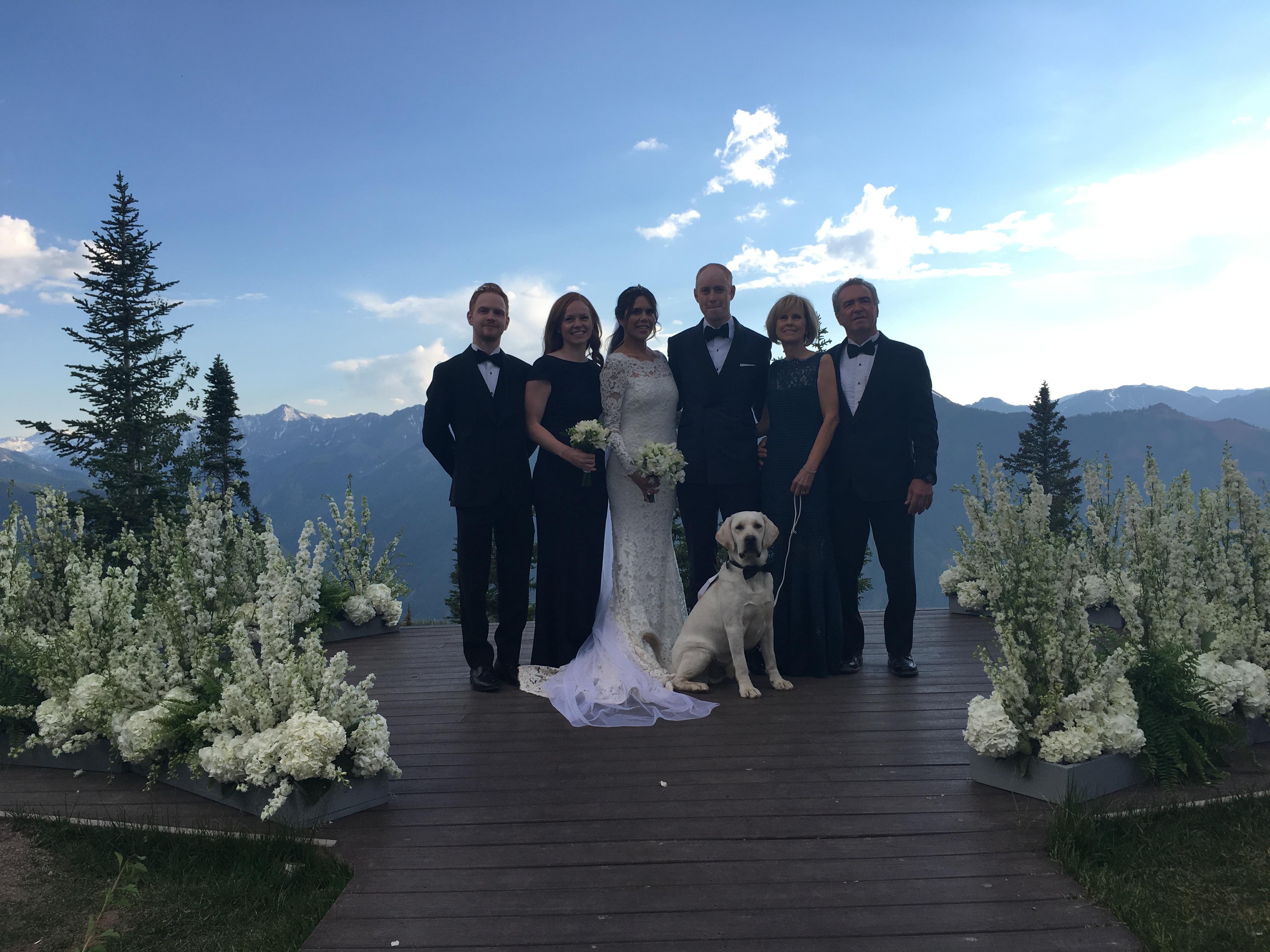 aspen wedding dog