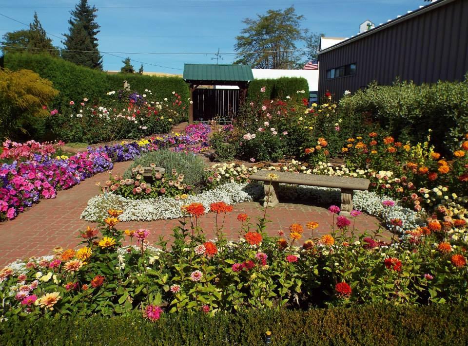 Country Cuzzins Garden.jpg