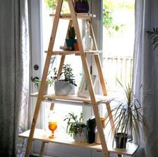 plant shelves - $120