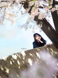 LisaPassionphotography (5).jpg
