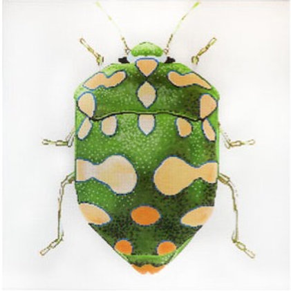 Big Bug - Green and Yellow