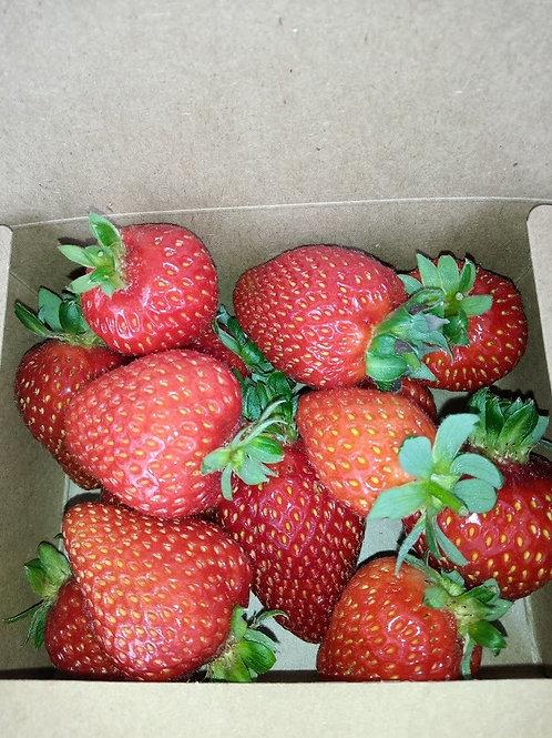 B Grade Strawberries