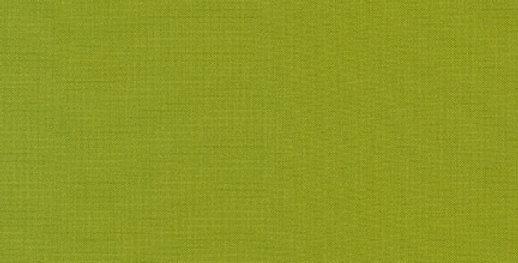 Modern Canvas Lime fabric by Robert Kaufman