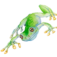 Treefrog-Semifinal-bright-1000px.png