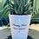 Thumbnail: 'Anxiety Plant' - Plant Pot
