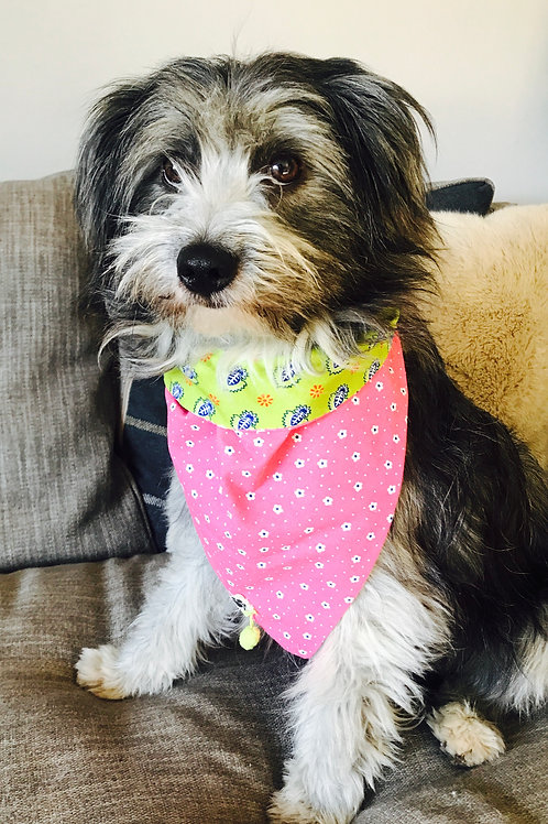 Floral Pink & Green Reversible Dog Bandana