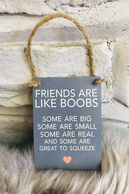 'Friends like boobs' Hanging Mini Sign