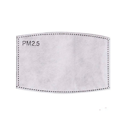 Face Mask Replacement PM2.5 Filters x 2
