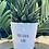 Thumbnail: 'You grow girl' Plant Pot