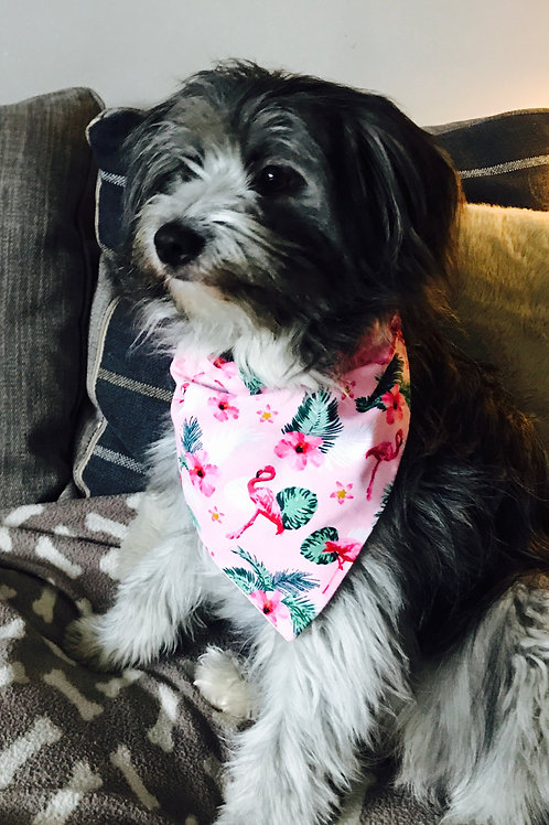 Flamingo Print Bandana on Collar - (M)