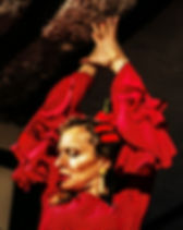 estudio flamenco sevilla.jpg