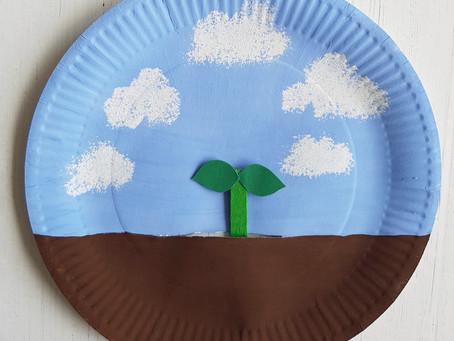 Sprouting seedling craft