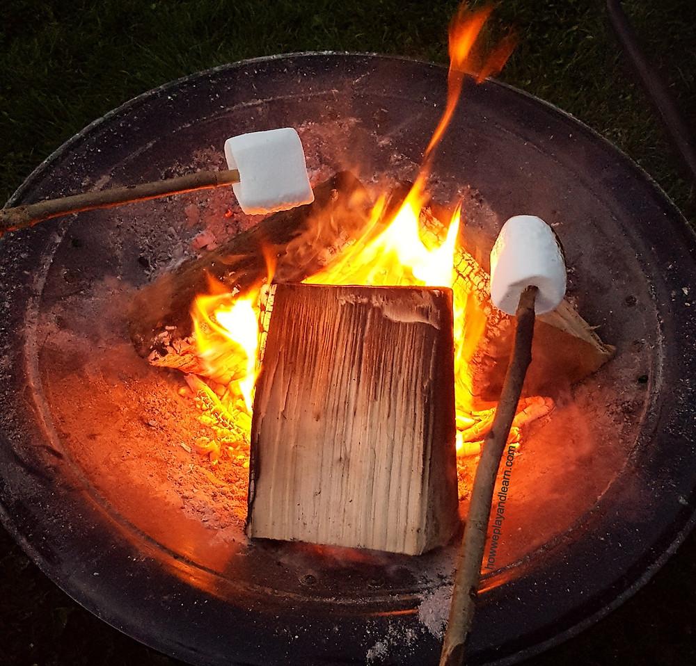 Marshmallows toasting on fire