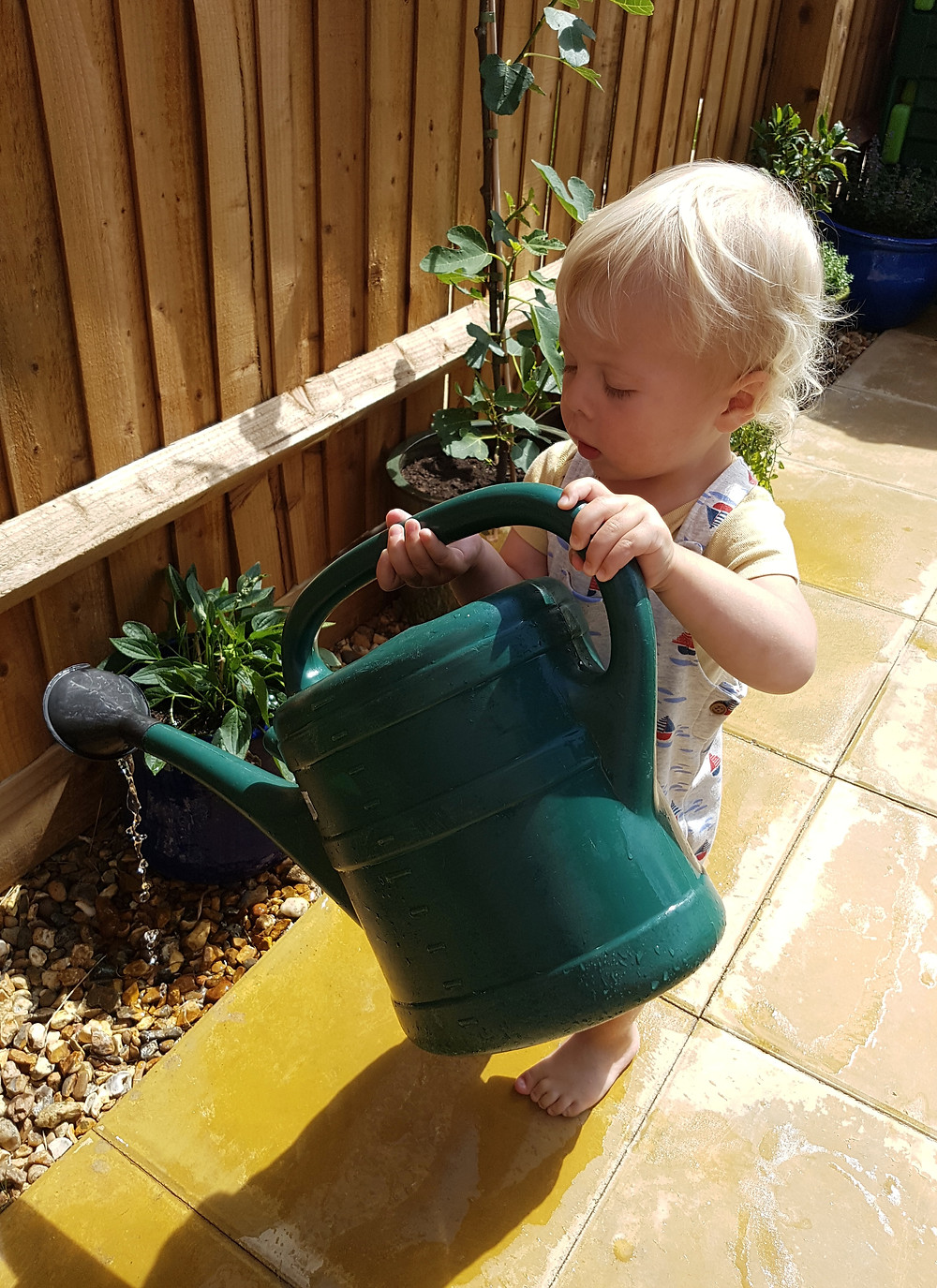 Toddler using watering can to water plants outdoors