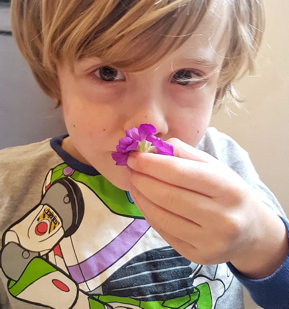 flower sensory play for kids