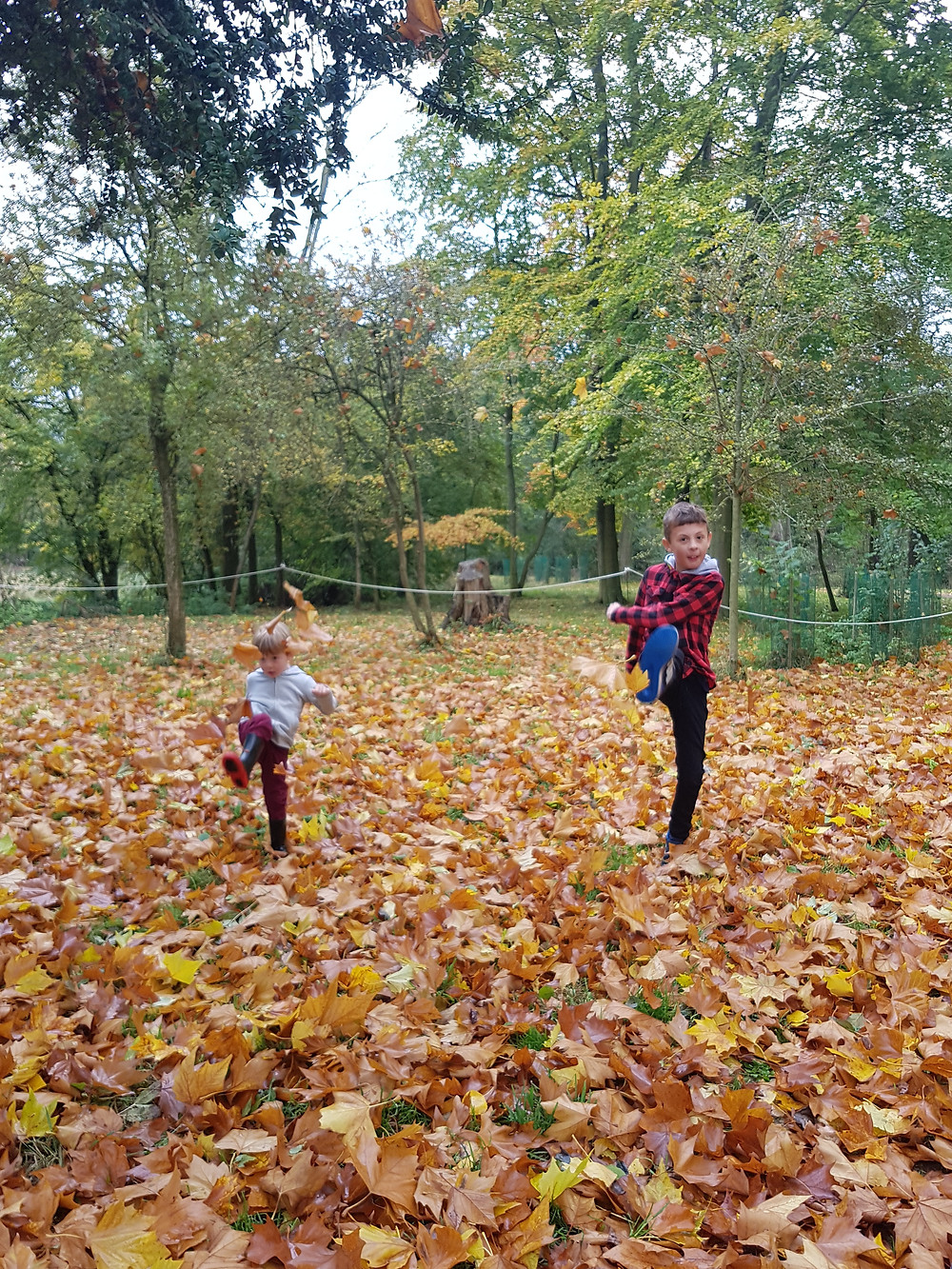 Children kicking autumn leaves, Going on a sound hunt, sensory play for kids