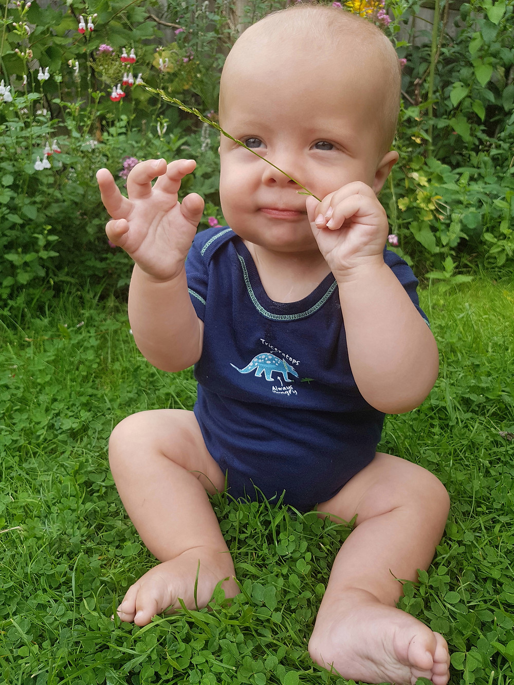 Baby sitting outdoors looking at grass