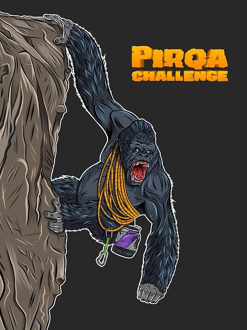 PIRQA - POLOS PIRQA CHALLENGE