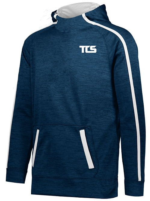 Tigers Stoked Tonal Heather Hoodie (Youth and Adult)