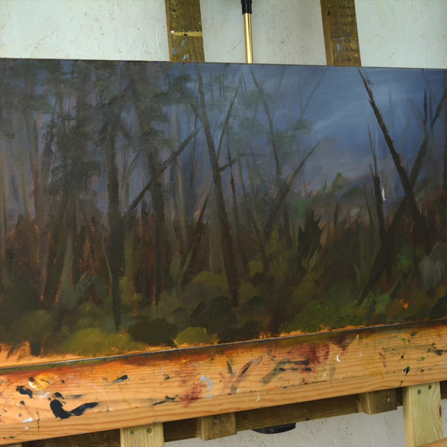 Woods commission
