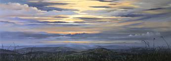 Look West - 800x300mm, oil in canvas.