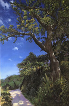 The Old Oak - 700x500mm, oil on canvas_