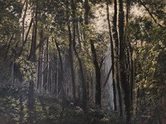 Oxen Wood - 700x600mm, oil on canvas_